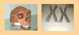 Livingstone Museum collections - Archaeology Section